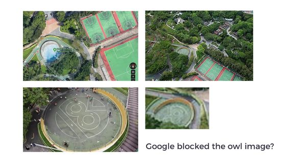 Google Kowloon Carpenter Road Park Bike Park Owl