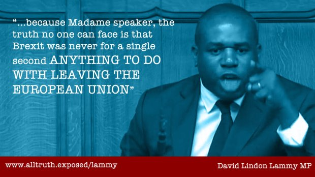 david lammy quote brexit not to do with leaving the eu