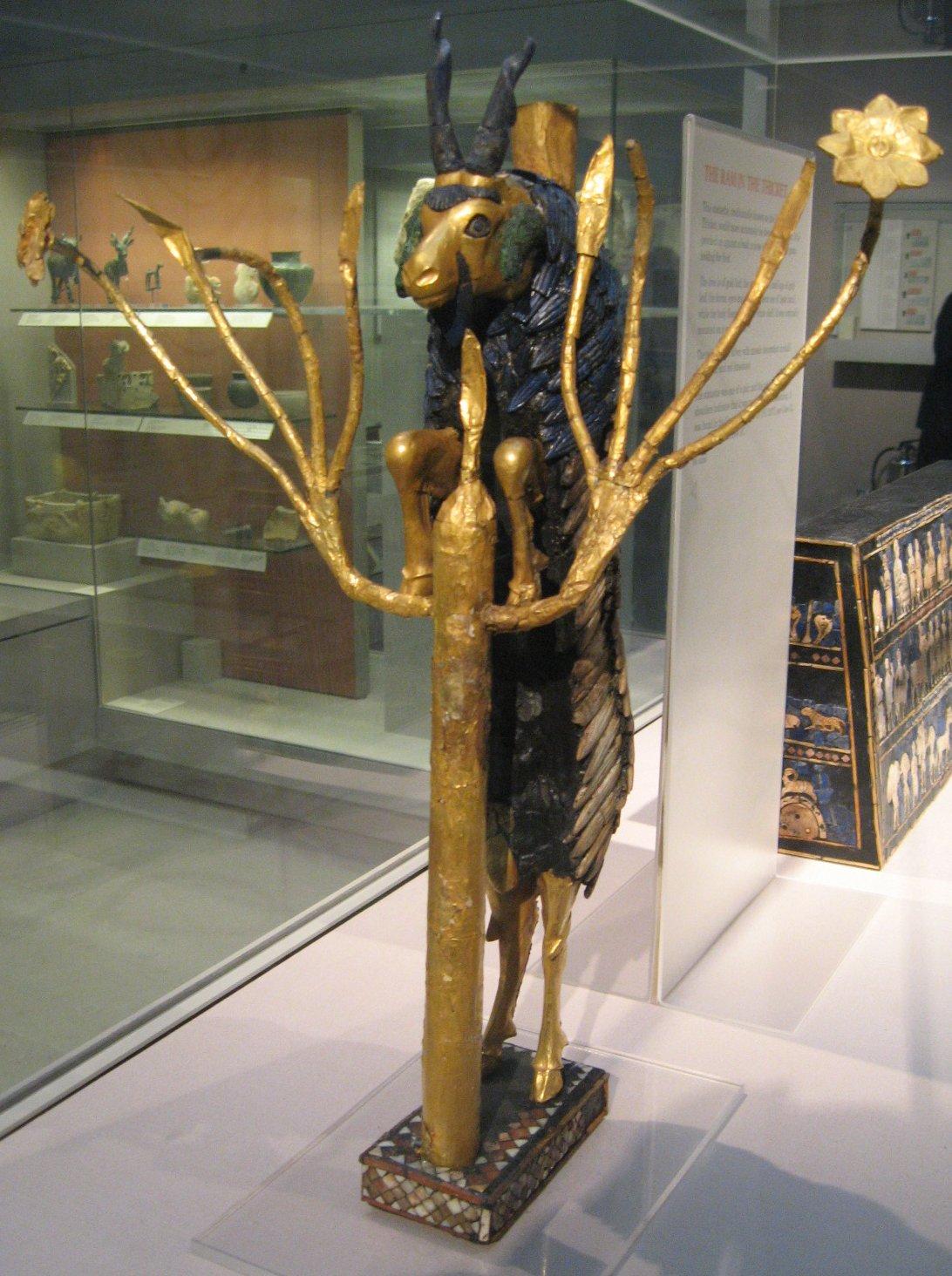 Freemasonry Secret Membership Rams in Thicket